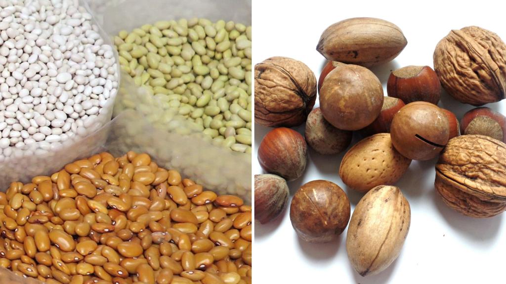 Nüsse und getrocknete Hülsenfrüchte gehören in den Vorratsschrank.